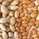 Danske forskere afslører hvordan giftige mandler blev spiselige